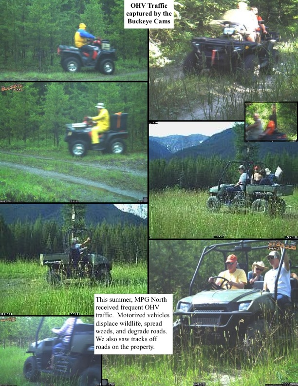 This summer, MPG North received frequent OHV traffic. Motorized vehicles displace wildlife, spread weeds, and degrade roads. We also saw tracks off roads on the property.