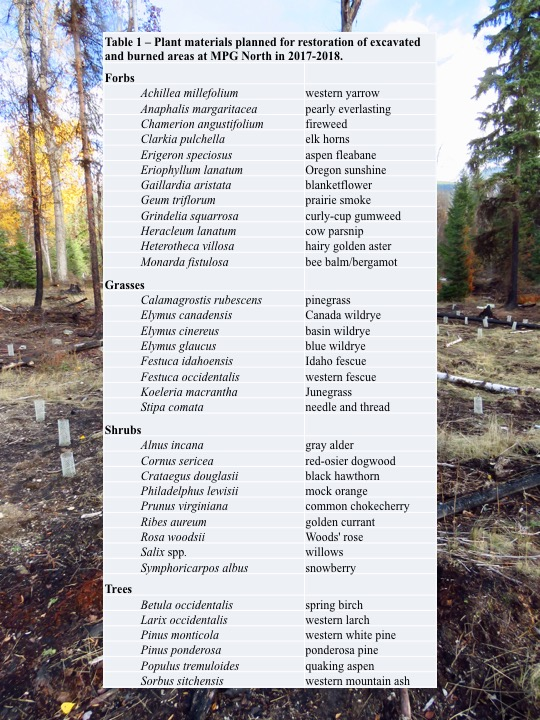 Plant materials planned for restoration of excavated and burned areas at MPG North in 2017-2018.