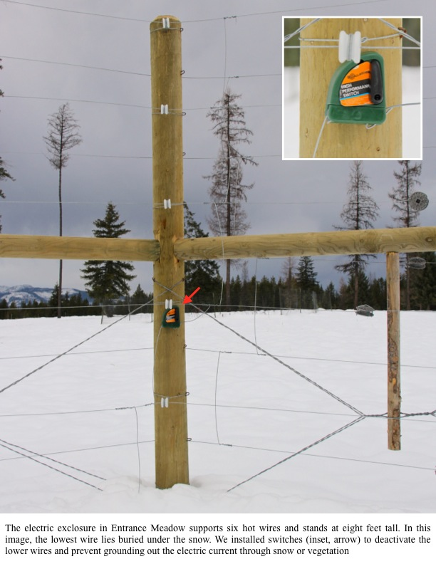 The electric exclosure in Entrance Meadow supports six hot wires and stands at eight feet tall. In this image, the lowest wire lies buried under the snow. We installed switches (inset, arrow) to deactivate the lower wires and prevent grounding out the electric current through snow or vegetation