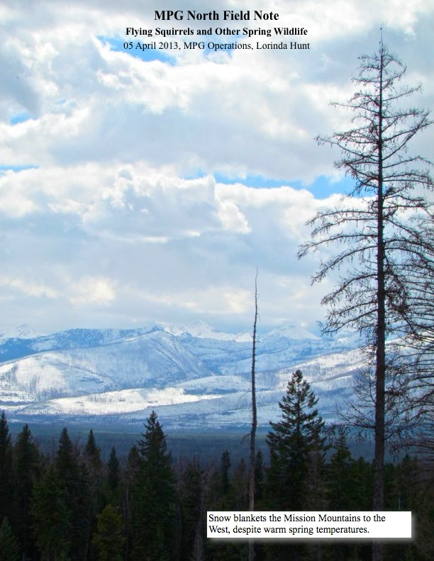 Snow blankets the Mission Mountains to the West, despite warm spring temperatures.