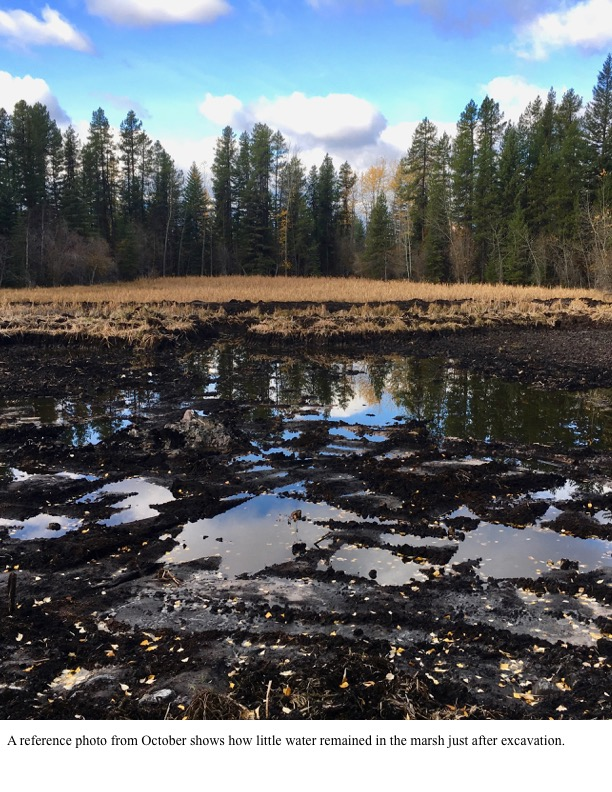 A reference photo from October shows how little water remained in the marsh just after excavation.