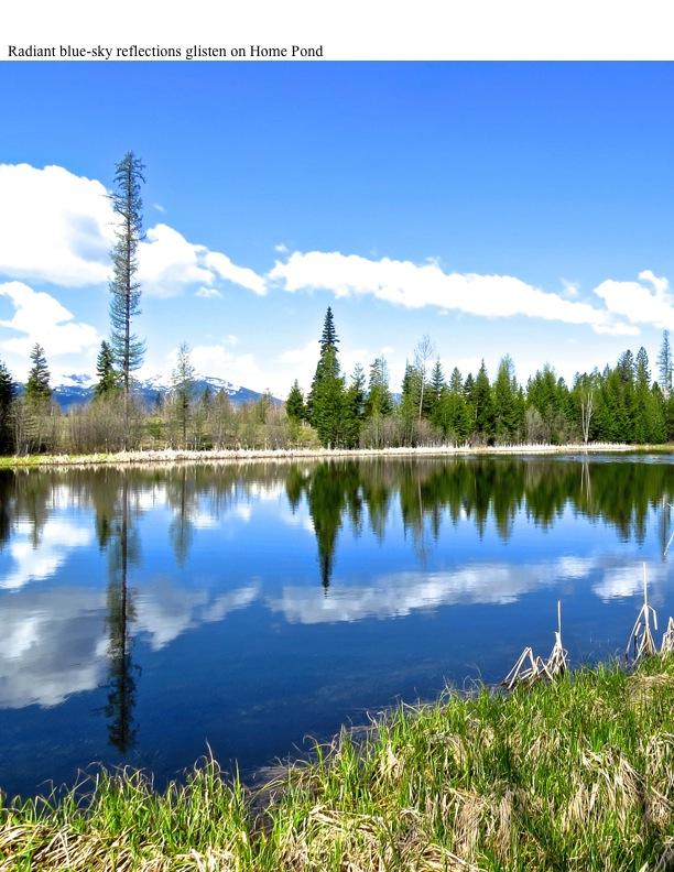 Radiant blue-sky reflections glisten on Home Pond