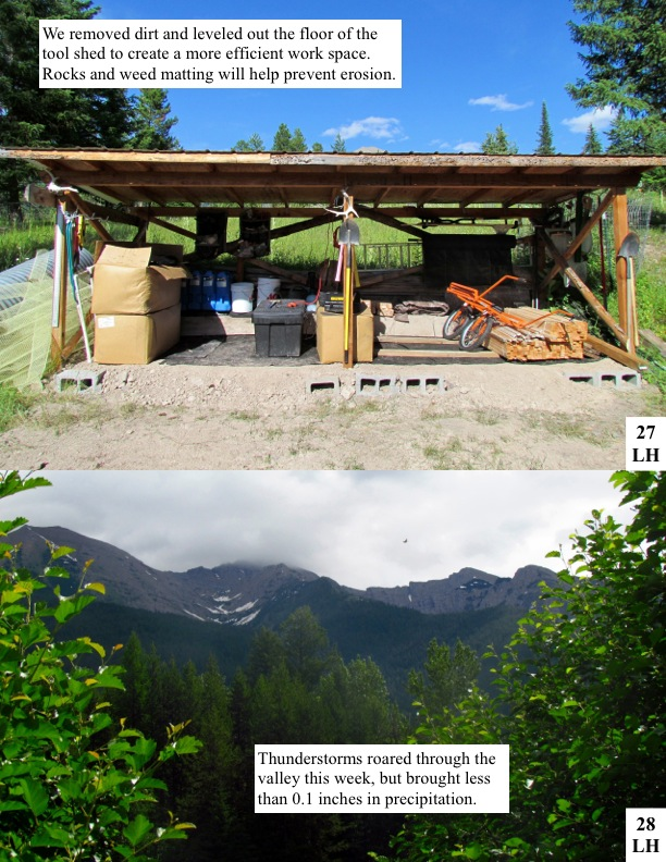 We removed dirt and leveled out the floor of the tool shed to create a more efficient work space. Rocks and weed matting will help prevent erosion.Thunderstorms roared through the valley this week, but brought less than 0.1 inches in precipitation.