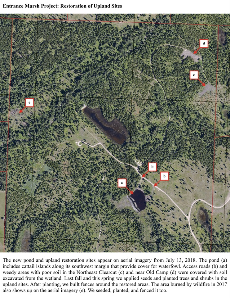 The new pond and upland restoration sites appear on aerial imagery from July 13, 2018.