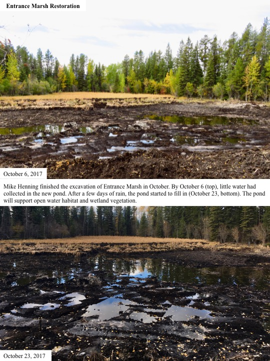 Mike Henning finished the excavation of Entrance Marsh in October. By October 6 (top), little water had collected in the new pond.